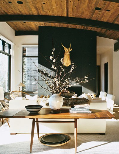 Ski lodge design amy hirschamy hirsch for Ski decorations for home