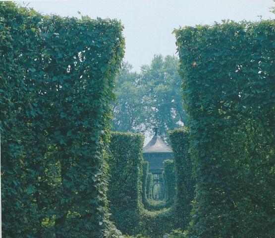 Folly hidden in a maze of hedges.