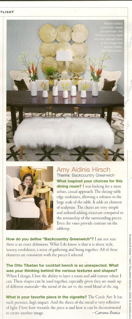Amy Aidinis Hirsch LLC