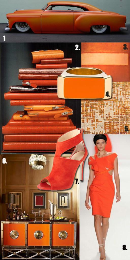 Amy Hirsch Celosia Orange