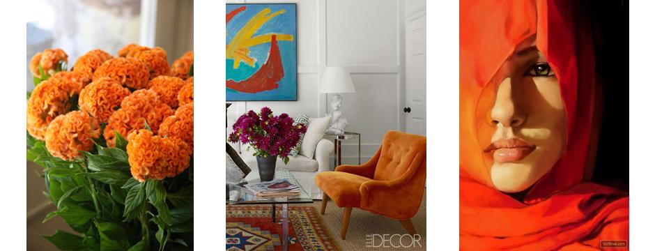 Color Obsession:  Celosia Orange