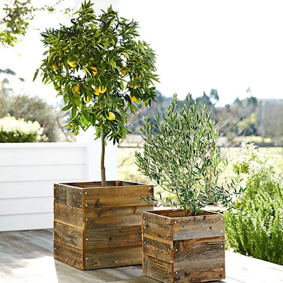 williams sonoma reclaimed redwood planters